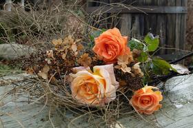 """Книга """"Жизнь цветов. О чем говорят букеты"""""""