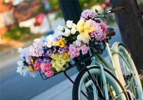 В Челябинске пройдет парад цветов
