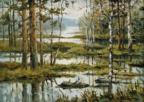 Уникальное болото под Миассом переведут в статус особо охраняемой территории