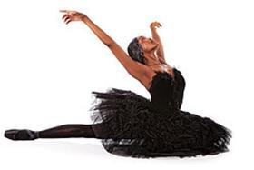 «Черный лебедь. Шедевры мирового балета». Послесловие
