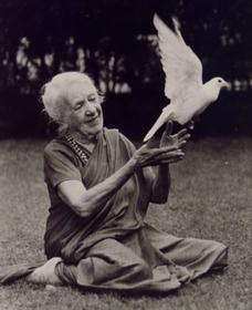 Первую леди йоги мир знает под именем Индры Деви, но мало кому известно, что знаменитая йогиня родилась и выросла в России, а звали ее тогда Евгения Петерсон-Лабунская.